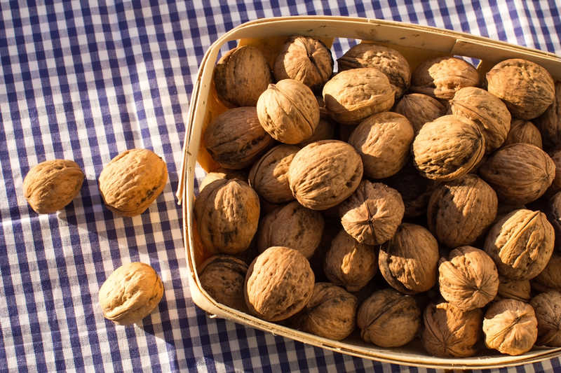 nuts in a basket on a blue gingham tablecloth |