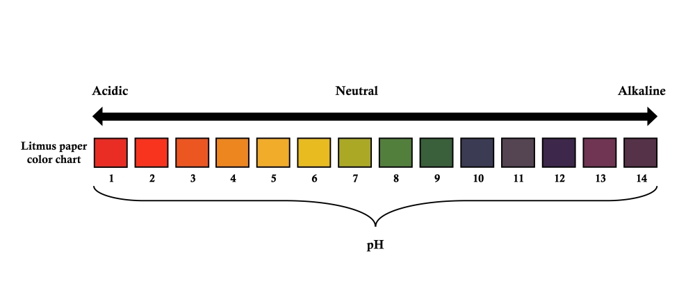 pH Scale and litmus paper color chart