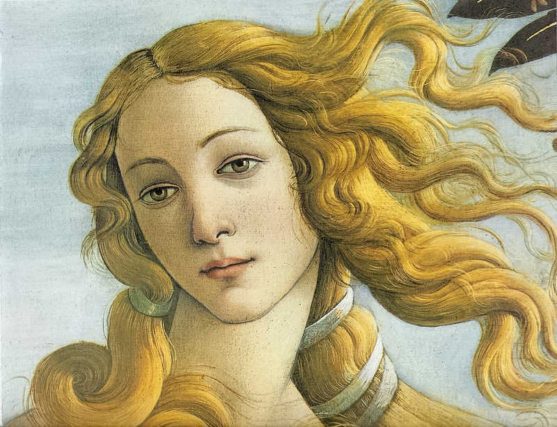 Botticelli's Venus head shot | Home | Masterpiece Skin Restoration