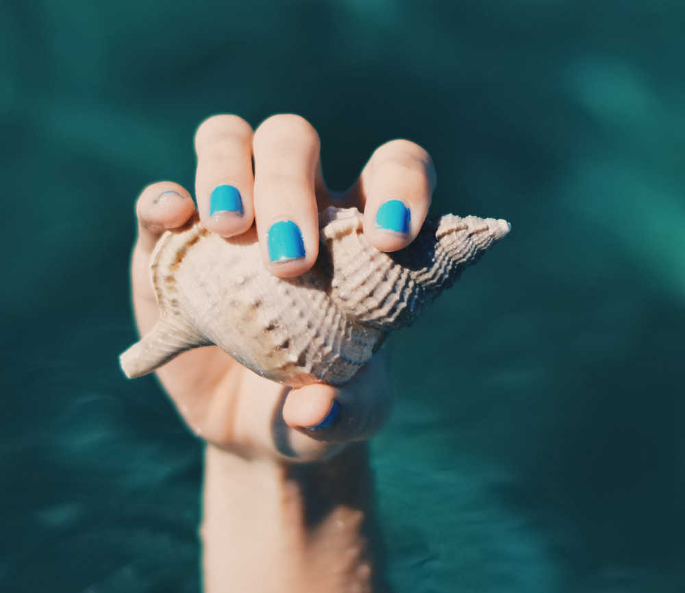 Hand with blue nail polish holding a seashell | The Best Nail Products | Shop Skincare | Nails | Masterpiece Skin Restoration