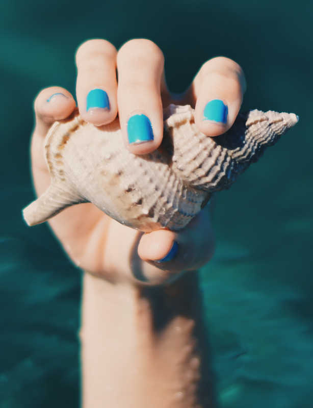 woman's hand, blue nails, holding seashell