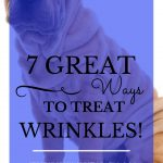 "Tan sharpei with wrinkles and blue text overlay, ""7 Great Ways to Treat Wrinkles!"""